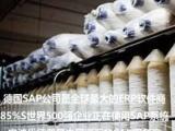 纺织厂ERP管理系统 印染厂管理软件SA