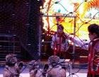 台州皇家马戏团表演 专业皇家马戏团表演