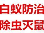 广州灭蚊子公司,专业酒店灭蚊子 灭蟑螂服务