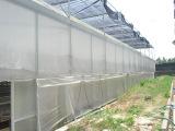 防紫外线 长寿 农用塑料薄膜 大棚膜 农用膜 聚乙烯薄膜,塑料布