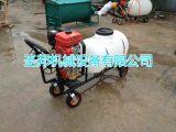 山东手推式打药机 便携式打药机 农业专用打药机生产厂家