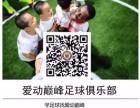 福州儿童足球启蒙培训 咨询赠送价值150元的体验课