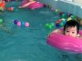 房山成熟婴幼儿游泳馆转让