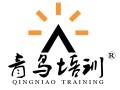 胶南承接企业网页制作,平面设计,企业LGOGO宣传册