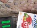 一款零食减肥QQ糖一颗瘦2-5斤