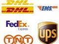 成都国际快递主营DHL 联邦 EMS 国际快递服务