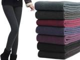 350克保暖打底裤/修身显瘦加厚加绒打底裤 七彩棉韩国时尚一体裤