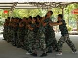 潮州拓展训练专业策划团队 磊创拓展培训 团队拓展 野外拓展