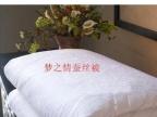 100特级桑蚕丝棉被双人单人定做特价正品
