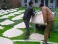 足球场人造草坪-幼儿园草坪-仿真草坪-假草坪-人工草皮