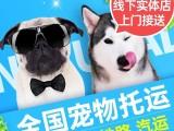 宠物托运服务全国猫咪专车运输代办狗狗快递空运邮际物流寄送