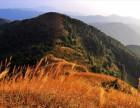 4月29日挑战广州最高峰,满山的芦苇荡 番禺情侣好去处
