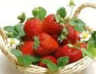 任丘奶油草莓采摘园