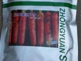 批发蔬菜种子 胡萝卜种子  进口种子 三
