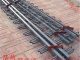 邵阳市陆韵多组式桥梁伸缩缝尺寸标准