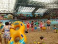 出售抚顺皇家海洋乐园门票成人通票130元!