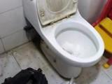 随时上门服务 厕所 马桶疏通 地漏疏通