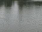 甘肃省庆阳市17亩坑塘水面转让