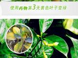 郑州合本生物科技专业提供EM菌液|精品EM菌液