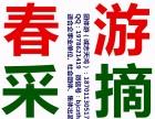 平谷京东石林峡一日游 石林峡一日游多少钱 采摘草莓一日游