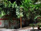 吐鲁番市阿娜尔古丽庄园(葡萄沟青年旅社)