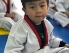 聚中韩跆拳道 欢迎新学员!