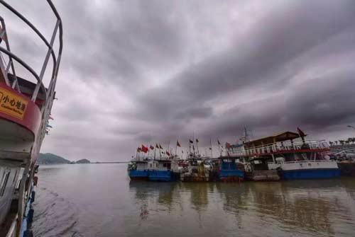 悠长的汽笛声中,一边吃着鲜到较的海鲜,温州洞头出海捕鱼游