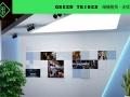 格林部落南京专业花卉绿植物租赁批发专业设计定期养护