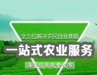 中国农综网创业平台加盟,返乡创业顾家俩不误