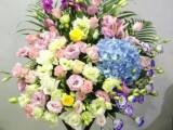 佛山五区鲜花花篮花束绿植免费送货,预定八八折