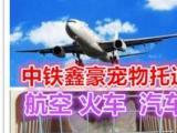 北京中铁鑫豪 宠物托运猫狗小宠-免费上门接送