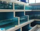 出租或转让江南白沙大道海鲜市场海鲜冷库,打养池。