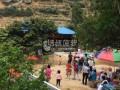 端午节小假期周末带你上山摘中山正宗神湾菠萝七月还有红肉火龙果