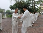 南山区专业陈氏太极拳培训班全在这里啦
