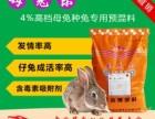 如何让母兔快速高效发情受孕母兔饲料配方母兔专用料