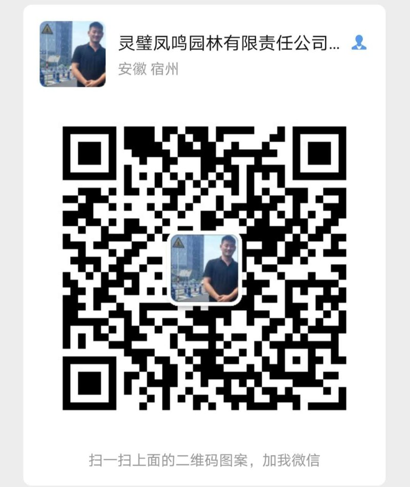 263cb54e45fcfd6cd8050c707697834.jpg