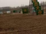银川宠物训练学校