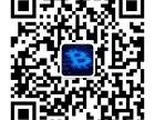 济南翠鸟科技网络