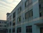 大王山兴业路边独院厂房3200平米招租可分租