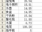 急售九成新宠物兔子兔笼全套用品11件 一站购齐!!!