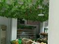 植物园 高档小区吉店出租 住宅底商 100平米