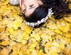 西安柠檬树拍出来的照片怎么样