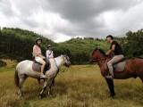 花都婚纱骑马拍照摄影爱好者脚踏船自驾游周末游