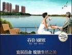 长乐宣传单印刷_纺织彩页订制_福清海报设计排版