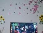 乐视超级智能电视机