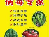 西紅柿TY褪綠斑萎病毒防治新型產品