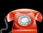 企业办公室网络布线 网络维护 电销电话安装及维护