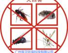广州杀虫公司 广州杀虫公司服务 项目