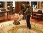 专业清洗各种材质地毯,办公、家庭地毯清洗地板打蜡
