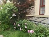 邯郸城市绿化施工 园林绿化 庭院设计